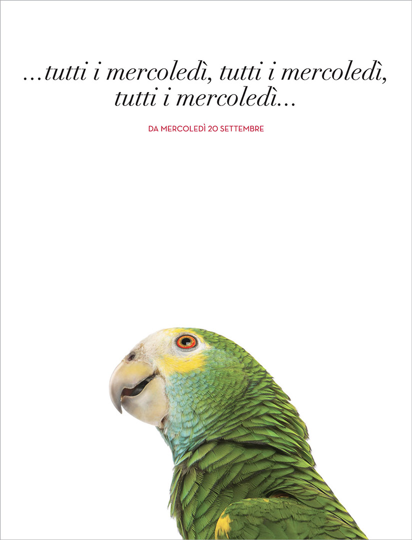 TEASER SUPPLEMENTO ANIMALI pagina.indd